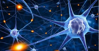 Dr. Joe Dispenza, fizica cuantică și un alt posibil răspuns la întrebarea: De ce ne îmbolnăvim?