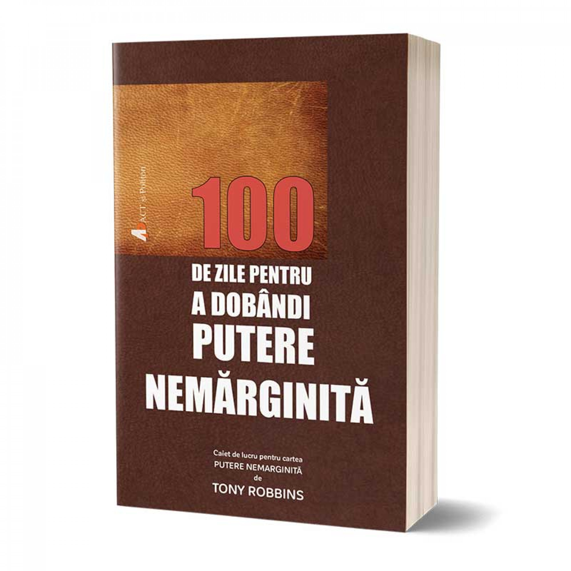 100 de zile pentru a dobândi Putere Nemărginită - caiet de lucru