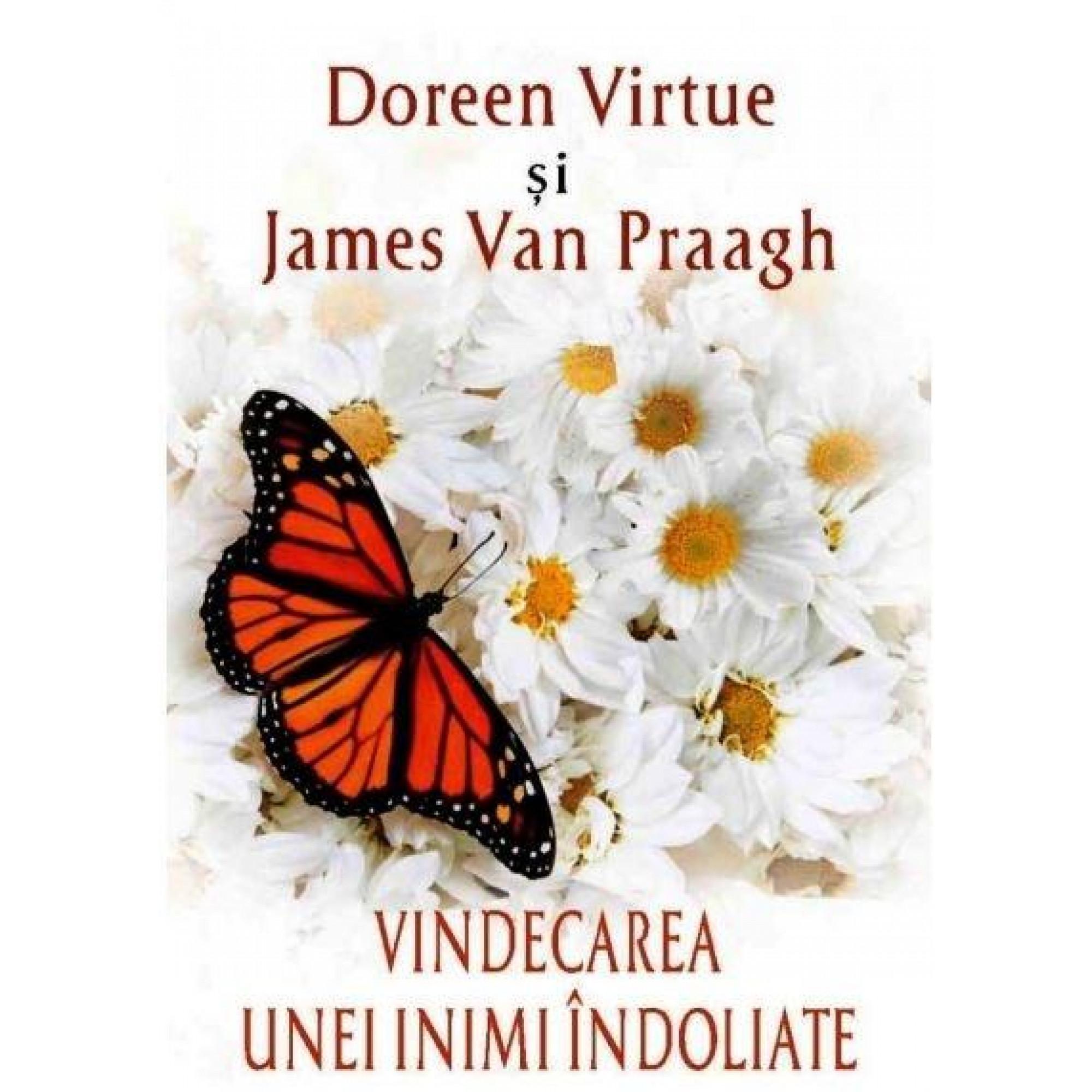 Vindecarea unei inimi îndoliate; Doreen Virtue, James van Praagh