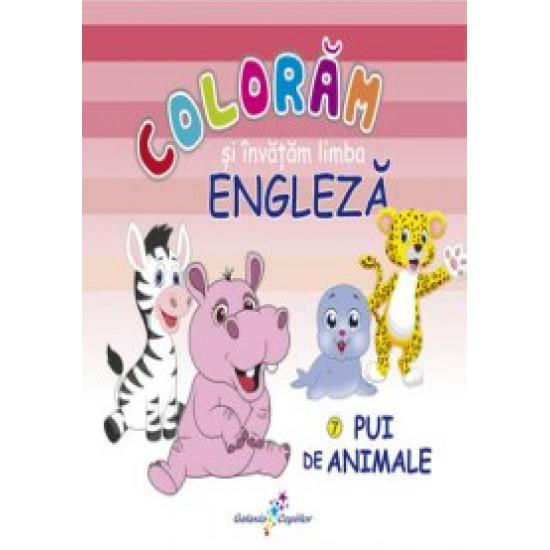 Colorăm și învățăm limba engleză. 7 - Pui de animale