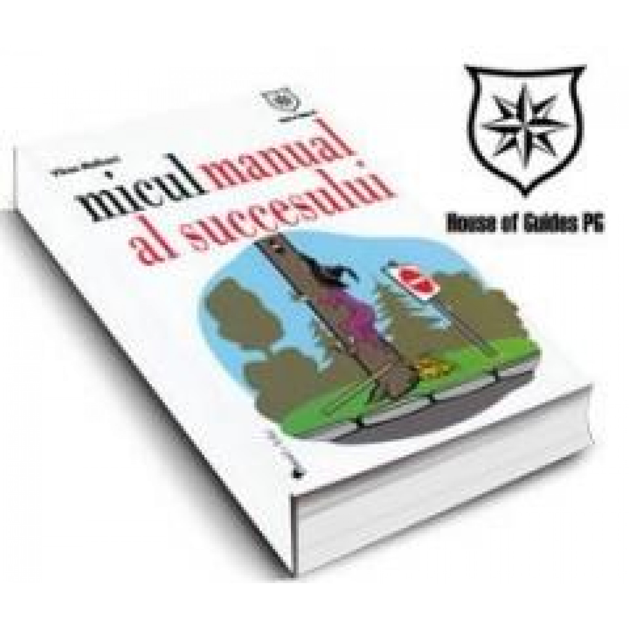 Micul manual al succesului; Vikas Malkani