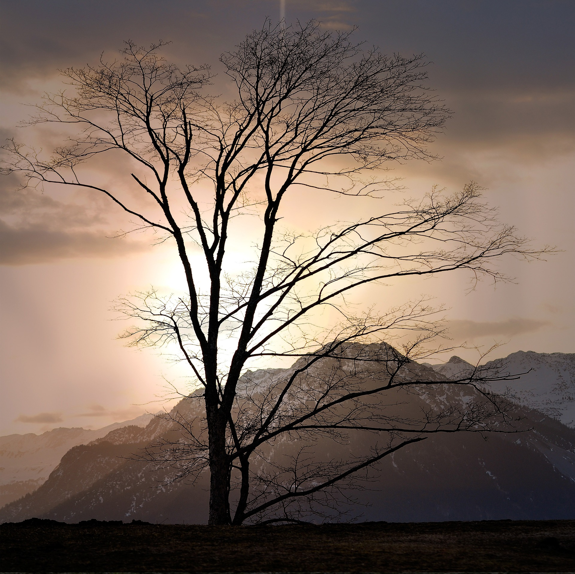landscape-696550_1920